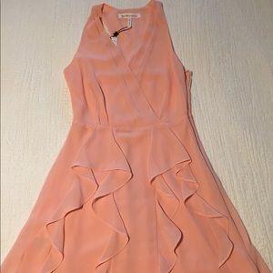 Chiffon Ruffled Trim Mini Dress